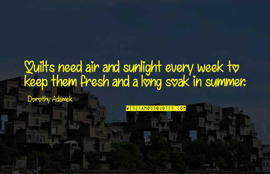 Week Long Quotes By Dorothy Adamek: Quilts need air and sunlight every week to