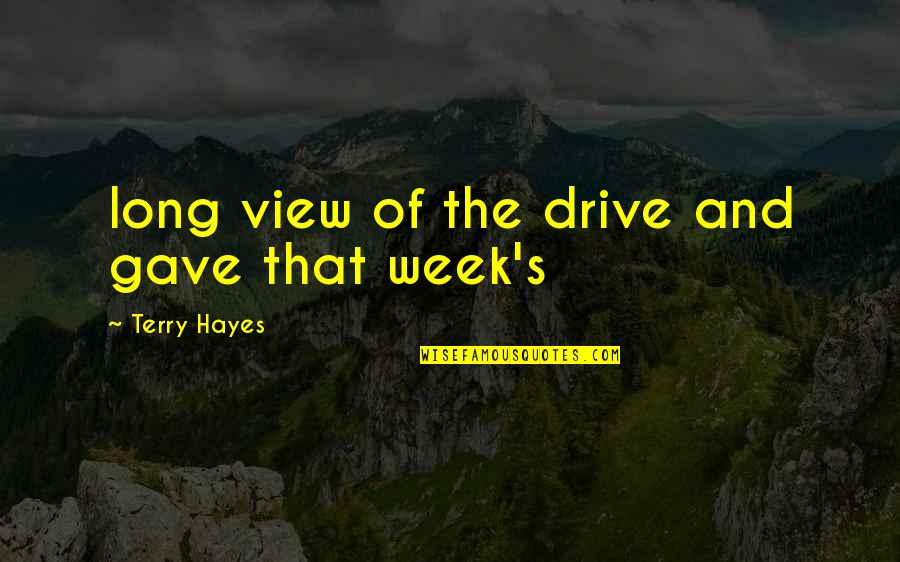 Week Long Quotes By Terry Hayes: long view of the drive and gave that
