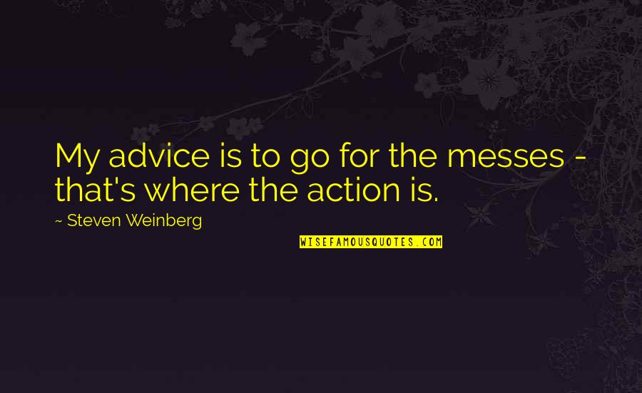 Weinberg Steven Quotes By Steven Weinberg: My advice is to go for the messes