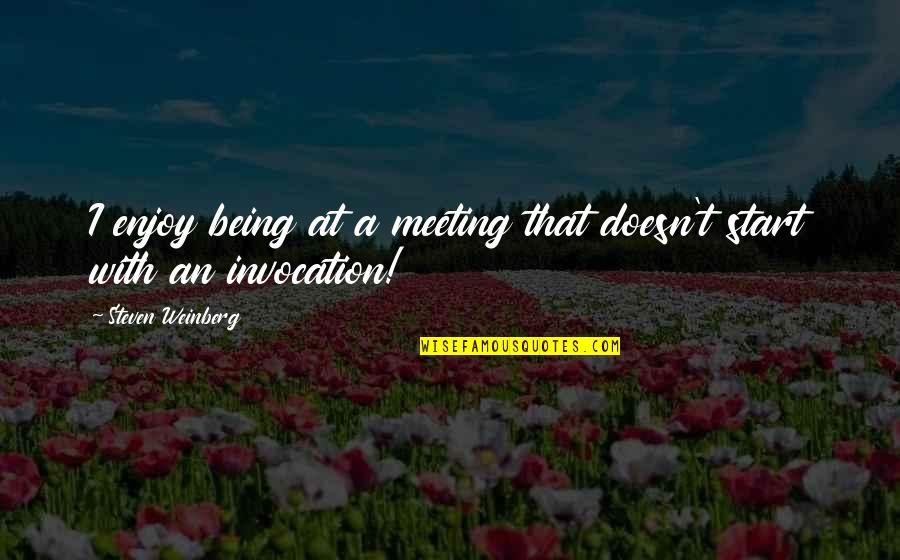 Weinberg Steven Quotes By Steven Weinberg: I enjoy being at a meeting that doesn't