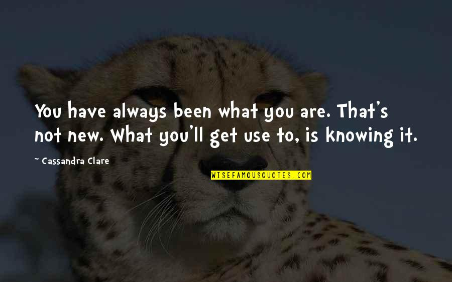 We'll Always Have Each Other Quotes By Cassandra Clare: You have always been what you are. That's