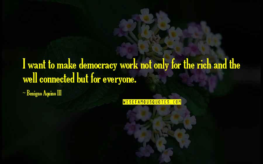 Well Connected Quotes By Benigno Aquino III: I want to make democracy work not only