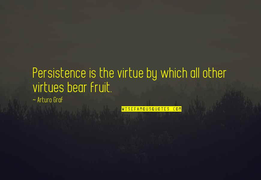 Wellcome Quotes By Arturo Graf: Persistence is the virtue by which all other