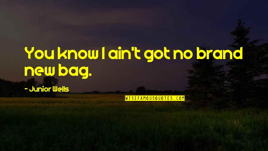 Wells Quotes By Junior Wells: You know I ain't got no brand new
