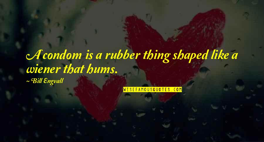 Were A Condom Quotes By Bill Engvall: A condom is a rubber thing shaped like
