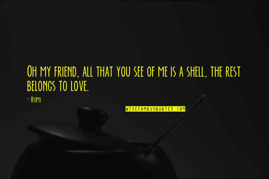 We're Just Friend Quotes By Rumi: Oh my friend, all that you see of
