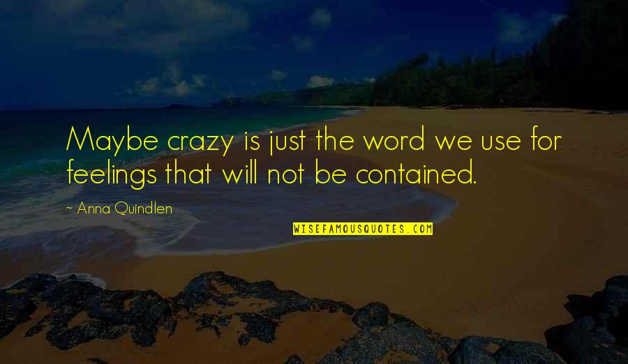 We're Not Crazy Quotes By Anna Quindlen: Maybe crazy is just the word we use