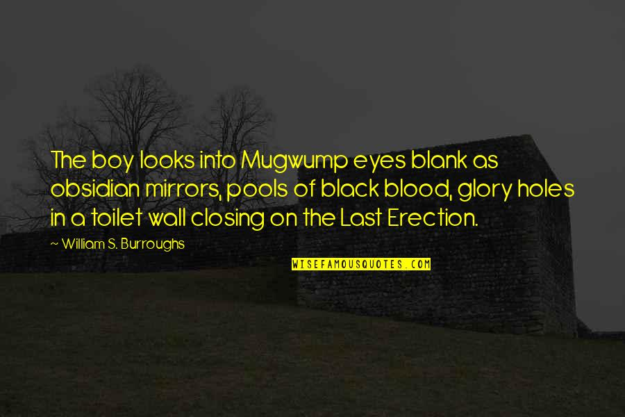 Western Medicine Quotes By William S. Burroughs: The boy looks into Mugwump eyes blank as