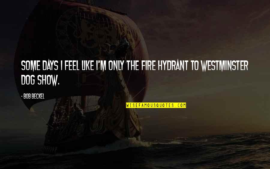 Westminster's Quotes By Bob Beckel: Some days I feel like I'm only the