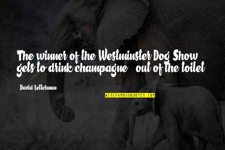 Westminster's Quotes By David Letterman: The winner of the Westminster Dog Show gets