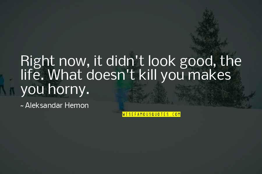 What Doesn Kill You Quotes By Aleksandar Hemon: Right now, it didn't look good, the life.