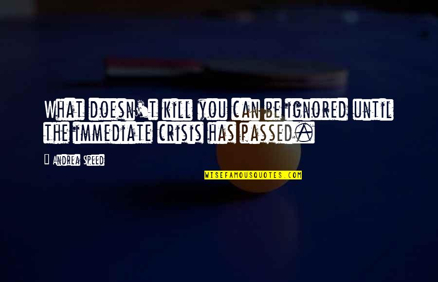 What Doesn Kill You Quotes By Andrea Speed: What doesn't kill you can be ignored until