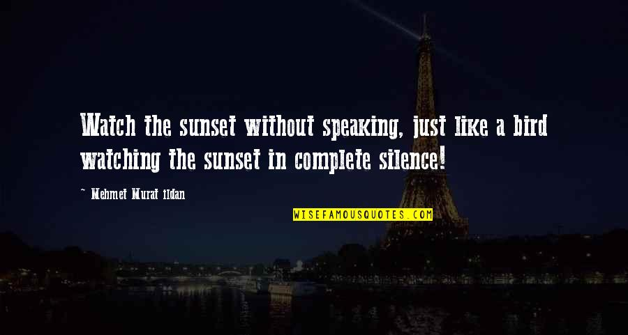 What Friendship Means Quotes By Mehmet Murat Ildan: Watch the sunset without speaking, just like a
