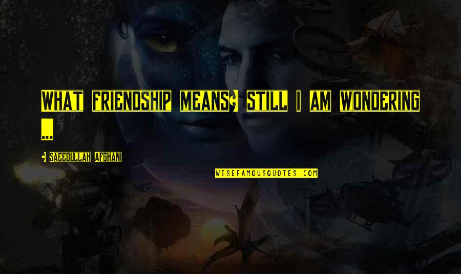 What Friendship Means Quotes By Saeedullah Afghani: What friendship means? still i am wondering ...