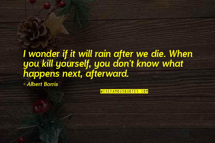 What Happens Next Quotes By Albert Borris: I wonder if it will rain after we