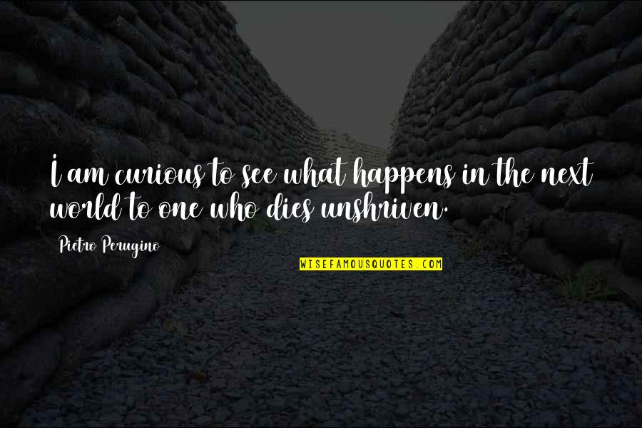 What Happens Next Quotes By Pietro Perugino: I am curious to see what happens in