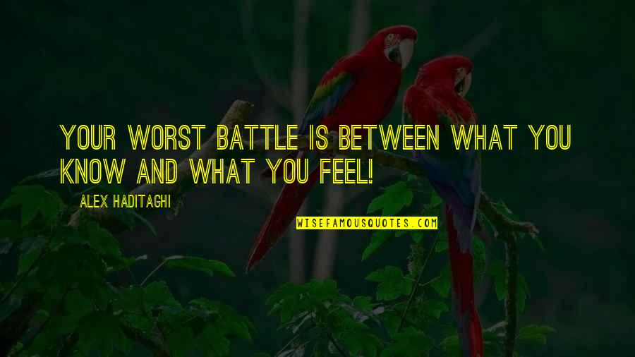 What I Feel For You Love Quotes By Alex Haditaghi: Your worst battle is between what you know