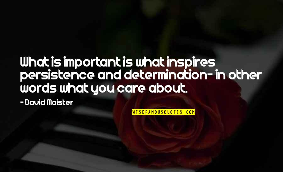 What Inspires You Quotes By David Maister: What is important is what inspires persistence and