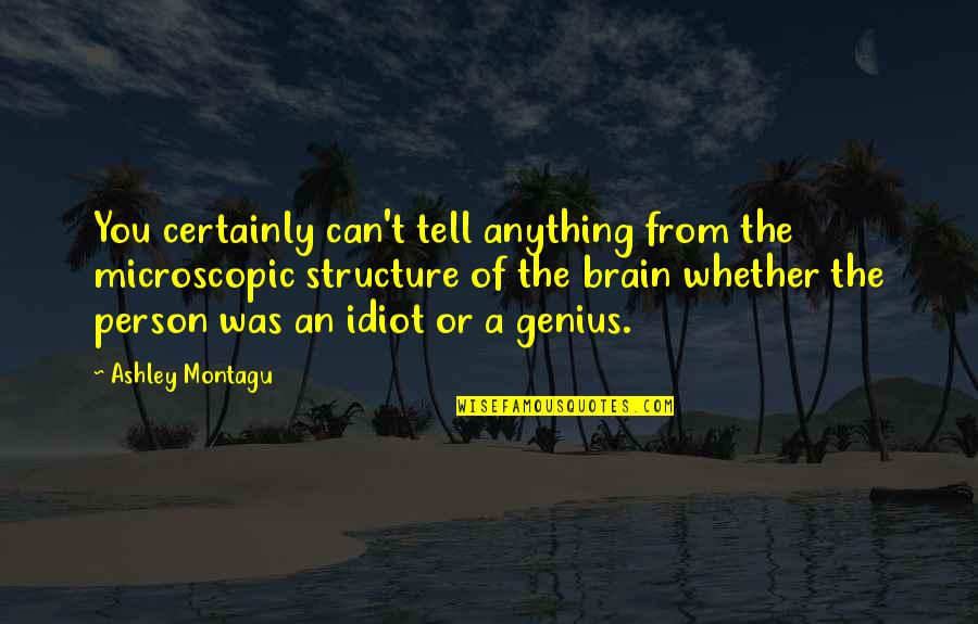 What Is A True Friend Quotes By Ashley Montagu: You certainly can't tell anything from the microscopic