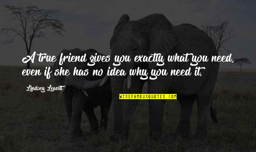 What Is A True Friend Quotes By Lindsey Leavitt: A true friend gives you exactly what you