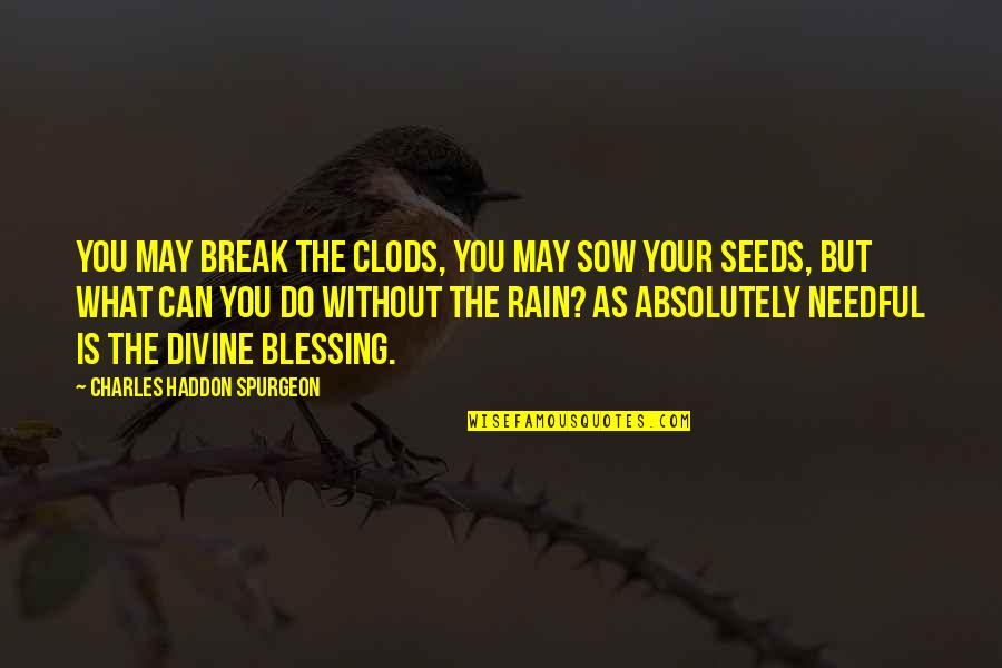What Is Grace Quotes By Charles Haddon Spurgeon: You may break the clods, you may sow