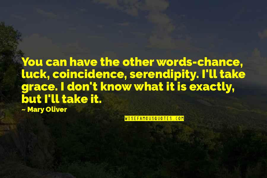 What Is Grace Quotes By Mary Oliver: You can have the other words-chance, luck, coincidence,