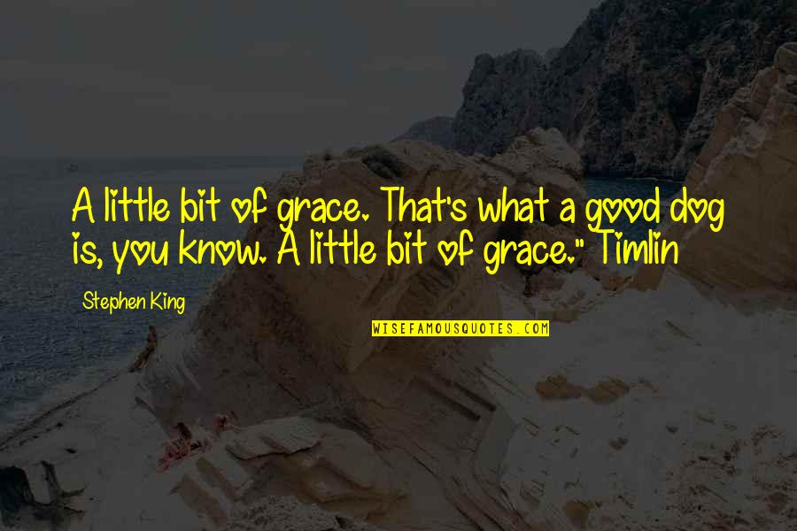 What Is Grace Quotes By Stephen King: A little bit of grace. That's what a