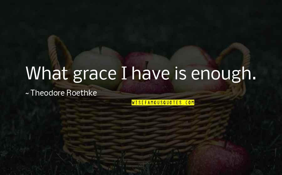 What Is Grace Quotes By Theodore Roethke: What grace I have is enough.
