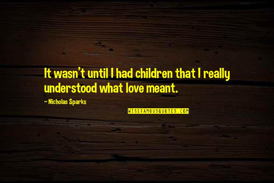 What Is Meant For You Quotes By Nicholas Sparks: It wasn't until I had children that I