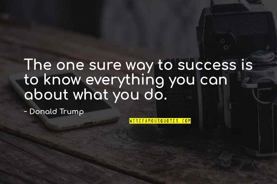 What Is Success Quotes By Donald Trump: The one sure way to success is to