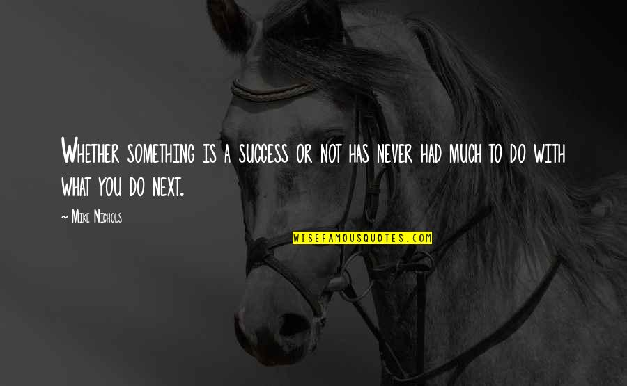 What Is Success Quotes By Mike Nichols: Whether something is a success or not has