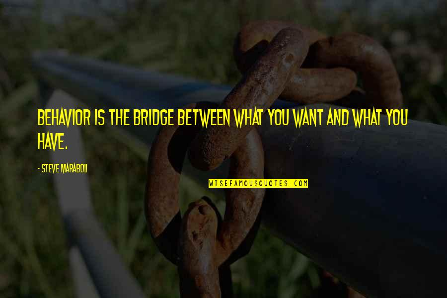 What Is Success Quotes By Steve Maraboli: BEHAVIOR is the bridge between what you want