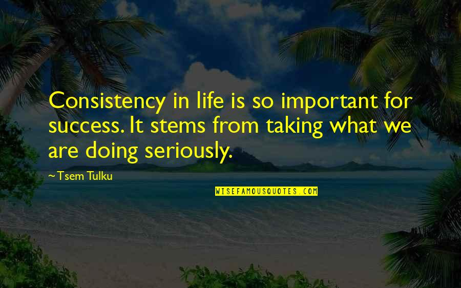 What Is Success Quotes By Tsem Tulku: Consistency in life is so important for success.