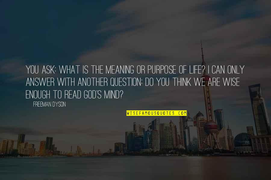 What Is The Purpose Of Life Quotes By Freeman Dyson: You ask: what is the meaning or purpose