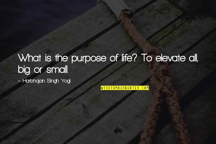 What Is The Purpose Of Life Quotes By Harbhajan Singh Yogi: What is the purpose of life? To elevate