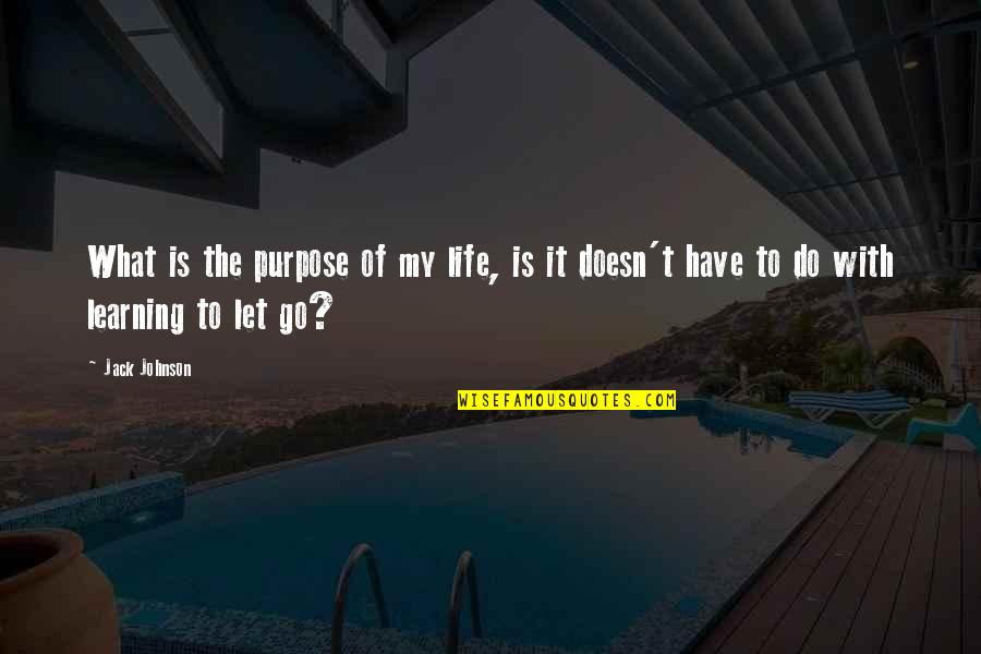 What Is The Purpose Of Life Quotes By Jack Johnson: What is the purpose of my life, is