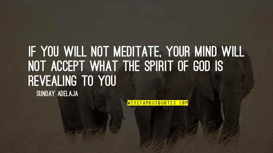 What Is The Purpose Of Life Quotes By Sunday Adelaja: If you will not meditate, your mind will