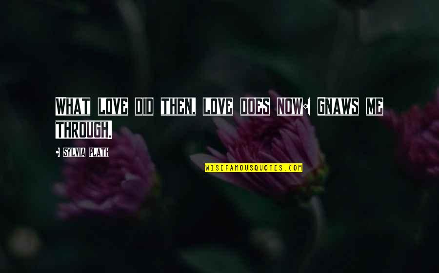What Love Does Quotes By Sylvia Plath: What love did then, love does now: Gnaws