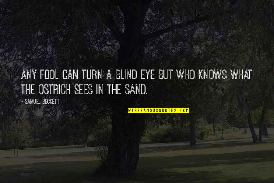 What The Eye Sees Quotes By Samuel Beckett: Any fool can turn a blind eye but