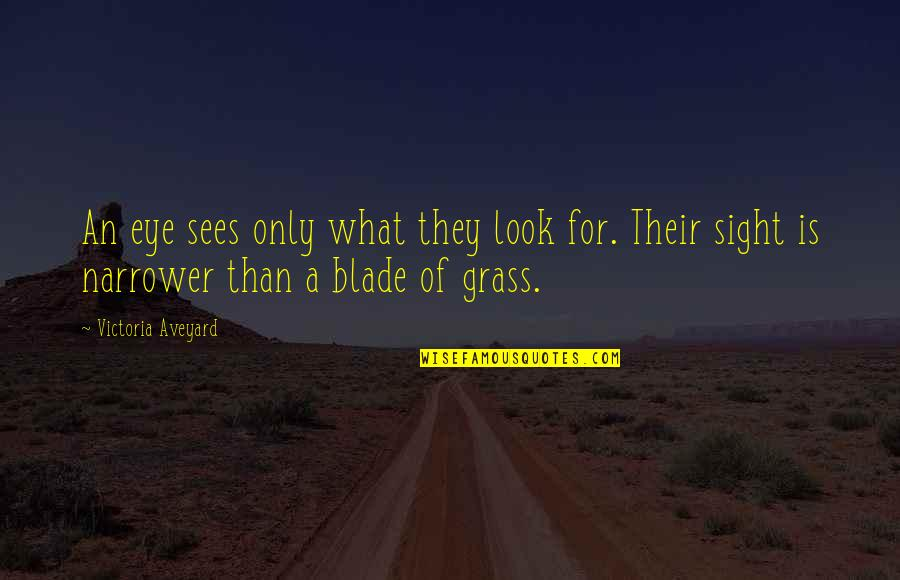 What The Eye Sees Quotes By Victoria Aveyard: An eye sees only what they look for.