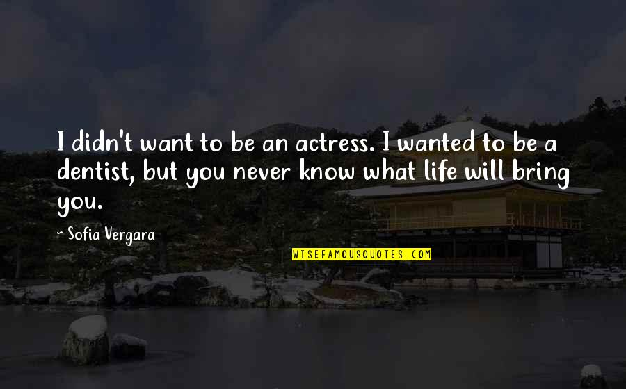 What U Want In Life Quotes By Sofia Vergara: I didn't want to be an actress. I