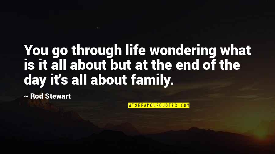 What We Go Through In Life Quotes By Rod Stewart: You go through life wondering what is it