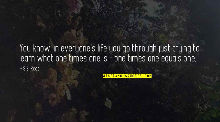 What We Go Through In Life Quotes By S.B. Redd: You know, in everyone's life you go through