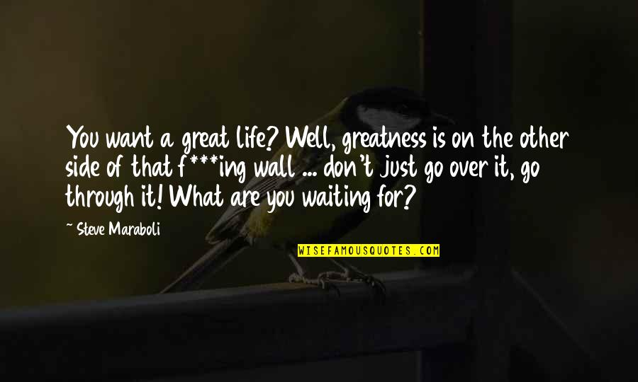 What We Go Through In Life Quotes By Steve Maraboli: You want a great life? Well, greatness is