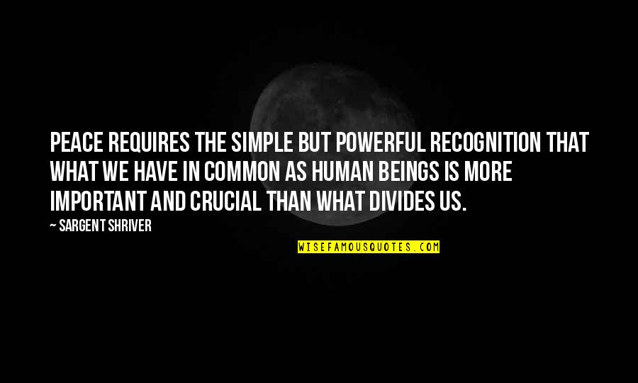 What We Have In Common Quotes By Sargent Shriver: Peace requires the simple but powerful recognition that