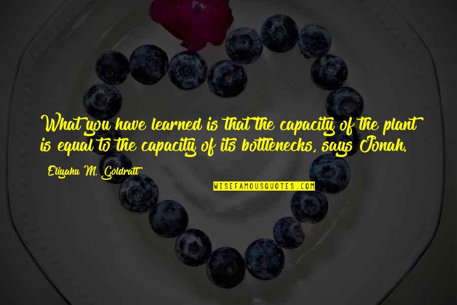What You Have Learned Quotes By Eliyahu M. Goldratt: What you have learned is that the capacity