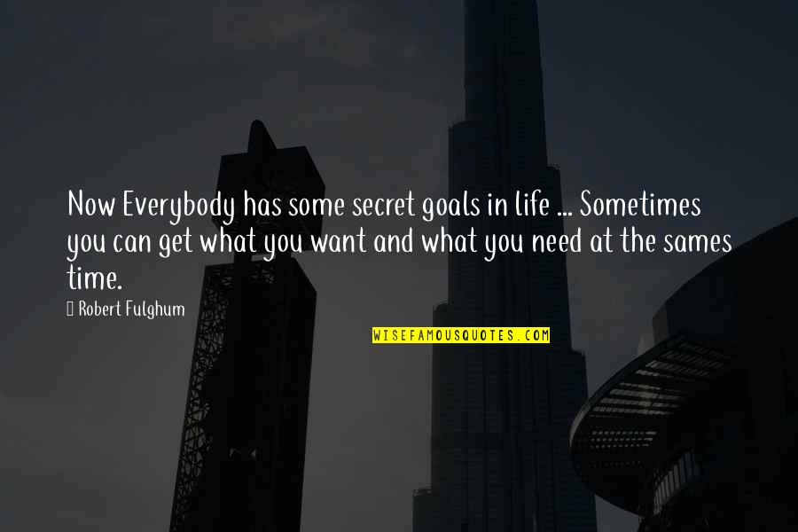 What You Need In Life Quotes By Robert Fulghum: Now Everybody has some secret goals in life