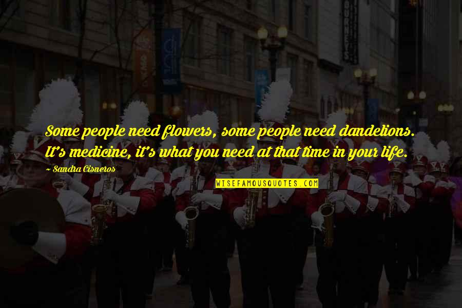 What You Need In Life Quotes By Sandra Cisneros: Some people need flowers, some people need dandelions.