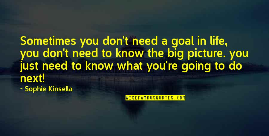 What You Need In Life Quotes By Sophie Kinsella: Sometimes you don't need a goal in life,