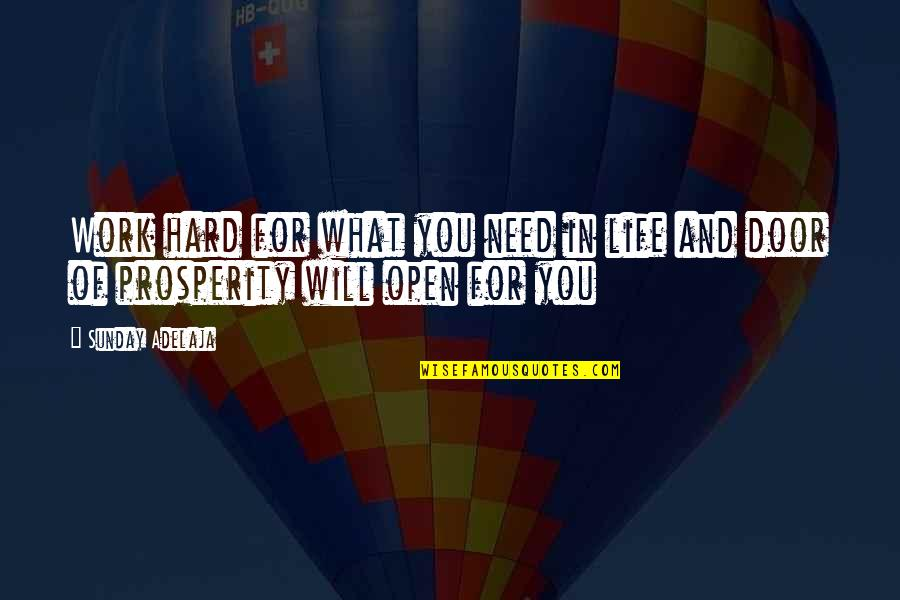 What You Need In Life Quotes By Sunday Adelaja: Work hard for what you need in life
